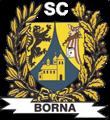 SC Borna e.V. - Boxen